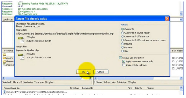 Overwrite the existing files