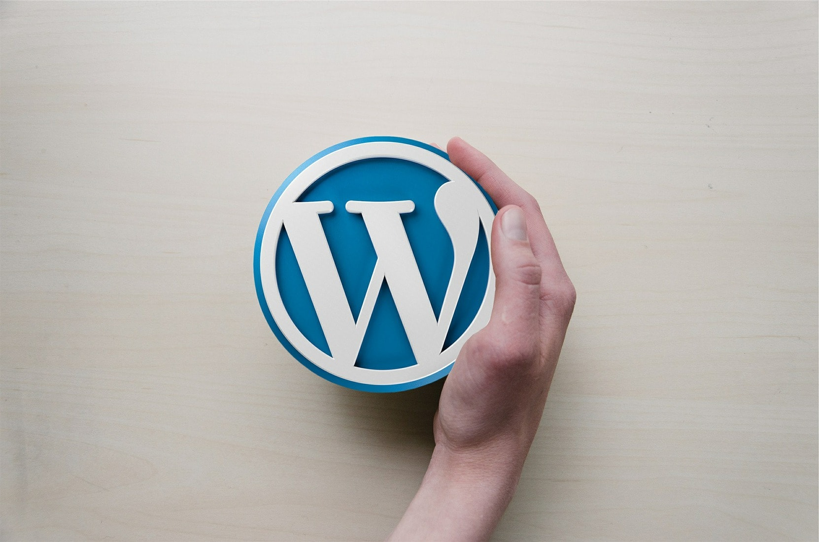 Person holding a WordPress sign
